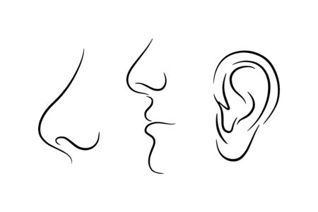 Doodle part face of people isolated on white. Hand drawing line art. Sketch vector stock illustration. EPS 10