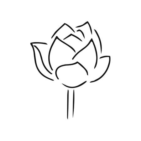 Doodle flower lotus icon isolated on white. Hand drawing line art.