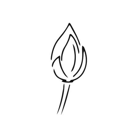 Doodle flower lotus icon isolated on white. Hand drawing line art. Sketch vector stock illustration. EPS 10 Illustration
