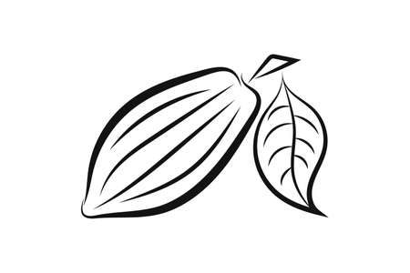 Doodle cocoa icon isolated on white. Hand drawing line art. Chocolate food. Vetores