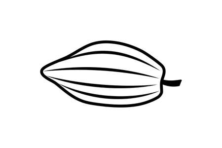 Doodle cocoa icon isolated on white. Hand drawing line art. Chocolate food.
