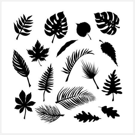 Doodle leaf set icons isolated on white. Stencil leaves.