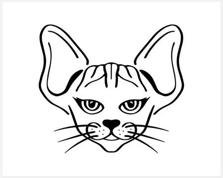 Doodle cat icon isolated on white. Outline hand drawing art line. Sketch animal. Vector stock illustration. Vetores