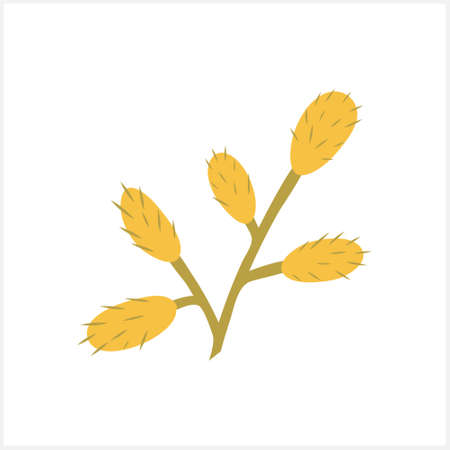 Doodle willow branch clipart isolated on white. Hand drawn art. Flower cartoon. Vector stock illustration. EPS 10