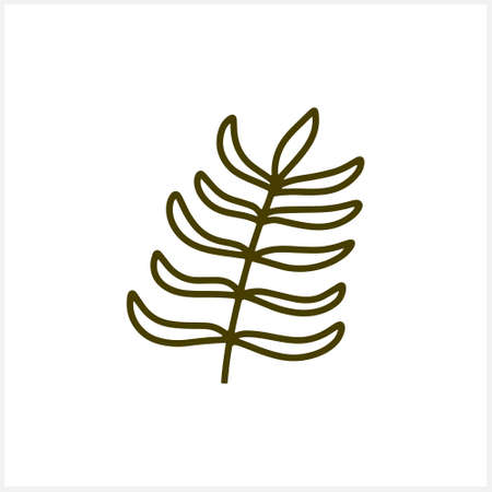 Doodle leaf of palm or fern icon isolated on white. Sketch nature. Part tree. Plant vector stock illustration. EPS 10 Illustration