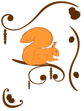 Squirrel with nut on branch. Natural design Vector