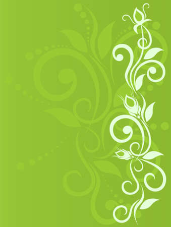 Delicate flower background with bud, primrose, floral element for design. Vector illustration Stock Vector - 6251310