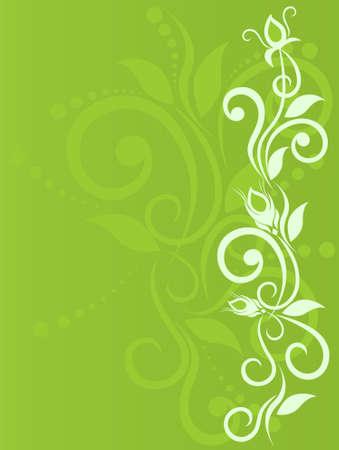 floral vector: Fondo de flor delicada con la yema, la primavera, el elemento floral para el dise�o. Ilustraci�n vectorial Vectores