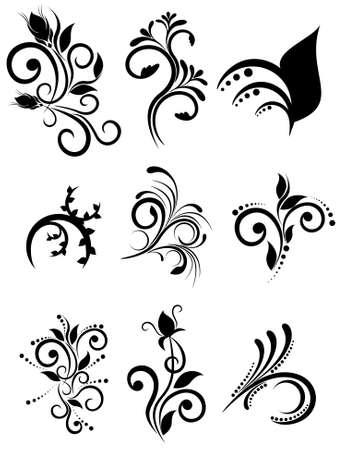 liane: Vector floral element for design, set ornaments Illustration