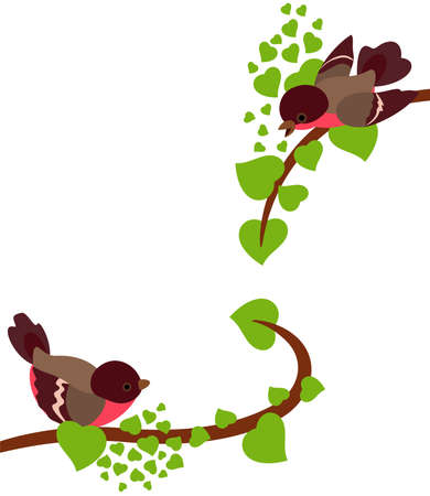 robin: Robin birds in love on spring branches of tree. Vector background