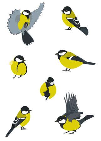 Birds collection. Swift Little birdies Vector