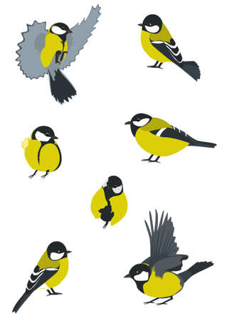 nimble: Birds collection. Swift Little birdies