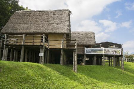 pile dwelling: prehistoric pile-dwelling Editorial
