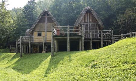 dwelling: prehistoric pile-dwelling Editorial