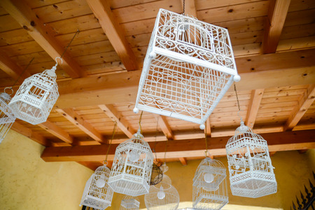 transformed: bird cages transformed into lamps