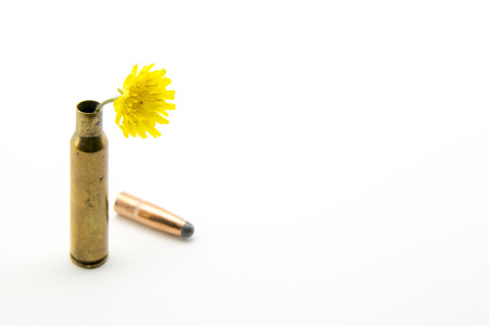 shotgun shell with yellow little flower photo