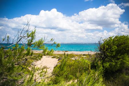 south italy: wild coast of Sardinia, south Italy