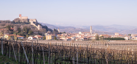 vinery: view of Soave (Italy) surrounded by vineyards that produce one of the most appreciated Italian white wines, and its famous medieval