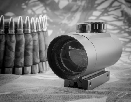 gunsight: composition with rifle ammunition and red dot sight