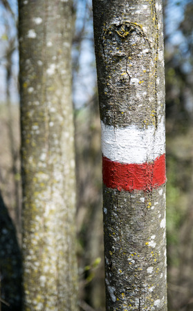 indicate: markings which indicate the continuity, in both directions, of a route marked. The colors adopted by the CAI (Italian Alpine Club) for trail marking are red and white
