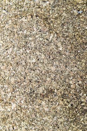 corkwood: view of brown cork panel photographed close Foto de archivo