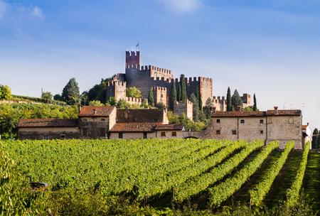 castillos: Vista de Soave (Italia), rodeada de vi�edos que producen uno de los vinos blancos italianos m�s apreciados, y su famoso castillo medieval.