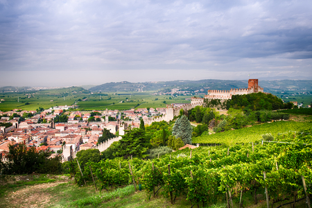 view of Soave (Italy) surrounded by vineyards that produce one of the most appreciated Italian white wines, and its famous medieval castle. 版權商用圖片 - 46583941