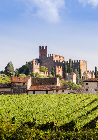 oenology: view of Soave (Italy) surrounded by vineyards that produce one of the most appreciated Italian white wines, and its famous medieval castle. Editorial