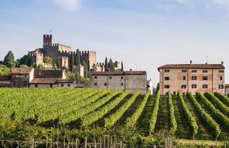 view of Soave (Italy) surrounded by vineyards that produce one of the most appreciated Italian white wines, and its famous medieval castle. Redakční