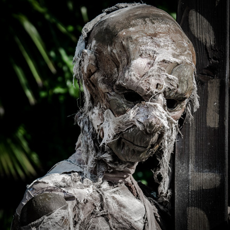 mummified: Mummified corpse wrapped in a bandage worn down and rumpled.