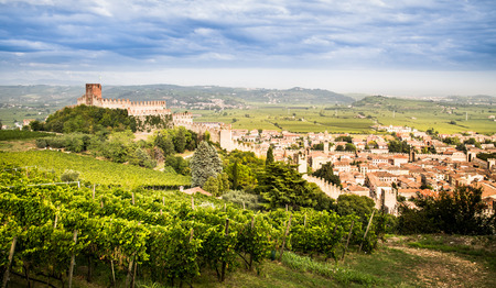 view of Soave (Italy) surrounded by vineyards that produce one of the most appreciated Italian white wines, 版權商用圖片 - 48215949