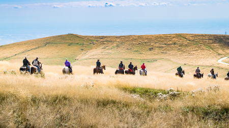 single person: Horsemen proceed in single file through high grass of a hilly landscape.