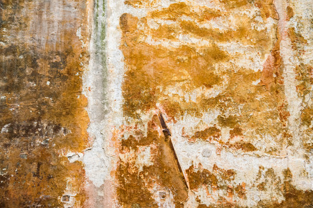 discolorations: Background consists of an old yellow peeling wall.
