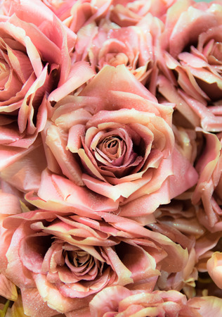 bouquet fleur: Contexte se compose de roses artificielles faites et peintes � la main.