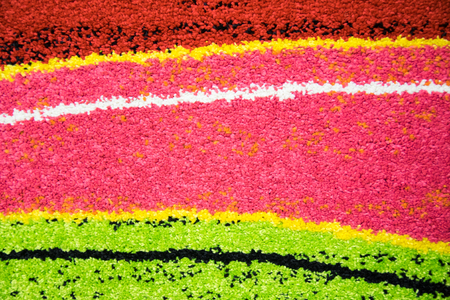 weft: Detail of colored weft of a woolen carpet.