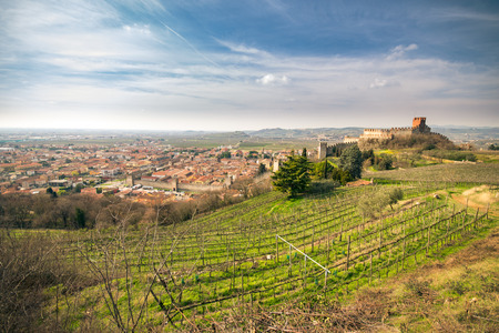 vinery: view of Soave (Italy) surrounded by vineyards that produce one of the most appreciated Italian white wines, and its famous medieval castle. Stock Photo