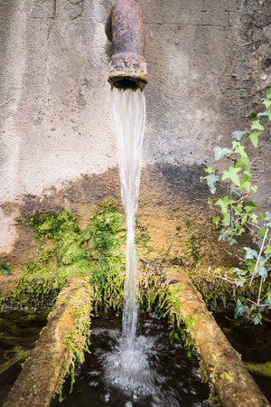 trickle: A trickle of water falls into a tub of old mossy stone.