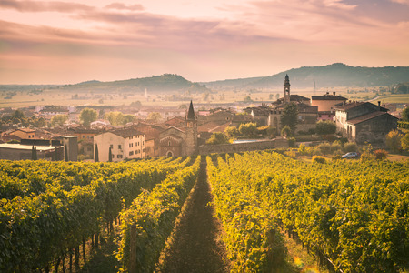 View of Soave (Italy) surrounded by vineyards that produce one of the most appreciated Italian white wines. 版權商用圖片 - 65018010