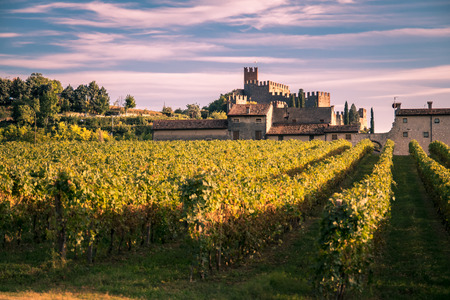 view of Soave (Italy) surrounded by vineyards that produce one of the most appreciated Italian white wines, and its famous medieval castle. Editorial