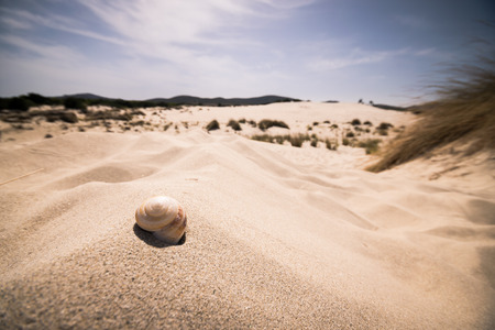 locality: The beach of Le Dune, also known as White Sands, is an area of white sand dunes in the town of Teulada, in the locality of Porto Pino, Sardinia, Italy. Stock Photo