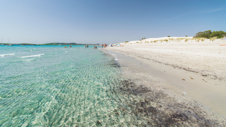 arenas: Transparent sea and crystal clear water of Sardinia island, Italy.