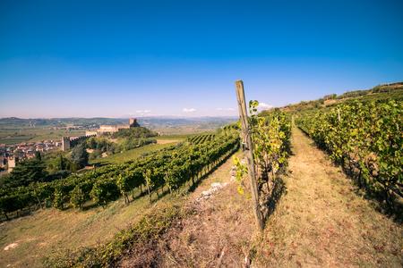 最も 1 つを生産するブドウ畑に囲まれたソアーヴェ (イタリア) のビューでは、イタリアの白ワインと有名な中世のお城を高く評価しました。