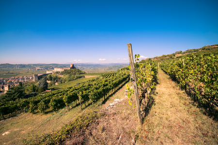 view of Soave (Italy) surrounded by vineyards that produce one of the most appreciated Italian white wines, and its famous medieval castle. Stock Photo