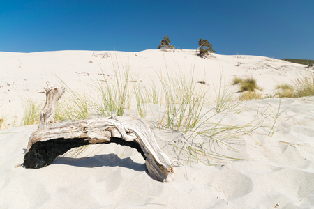 The beach of Le Dune, also known as White Sands, is an area of white sand dunes in the town of Teulada, in the locality of Porto Pino, Sardinia, Italy. Stock Photo