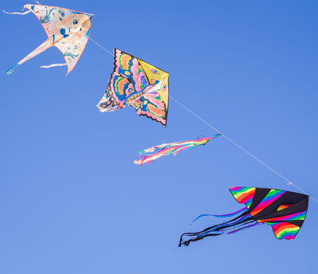 diagonal: Chioggia, Italy - April 30, 2017: Colored kites fly in a row in the blue sky hanging on one strand.