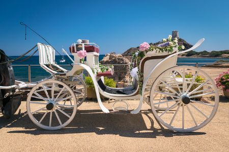 Old white wooden carriage towed by a horse during a wedding on the sea.