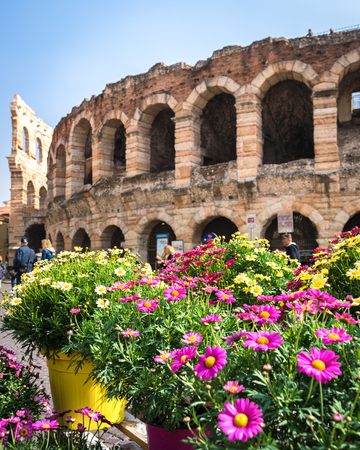 Flowers for sale in the square and in the background the arena of Verona. Banco de Imagens