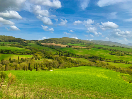 Landscape in spring. Sinuous gorgeous green hills in a sunny day. 版權商用圖片