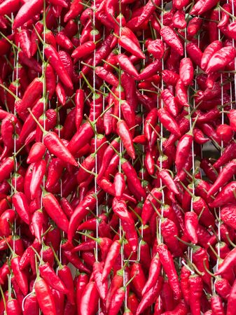 Texture formed by red calabrian peppers hanging to dry in the sun.