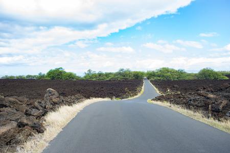 lava field: Road Through The Lava Field